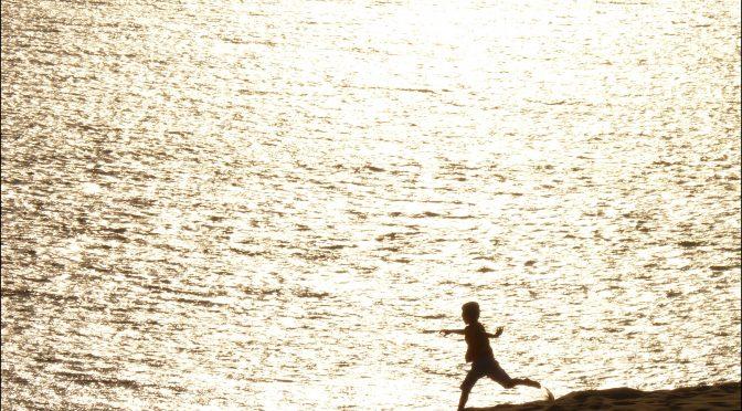 Evelyne Ritaine, Blessures de frontières sur le chemin de migration, in Actes de la journée d'étude Orpsere-Samdarra «Vulnérabilités et demande d'asile»,  6/12/2017, Lyon